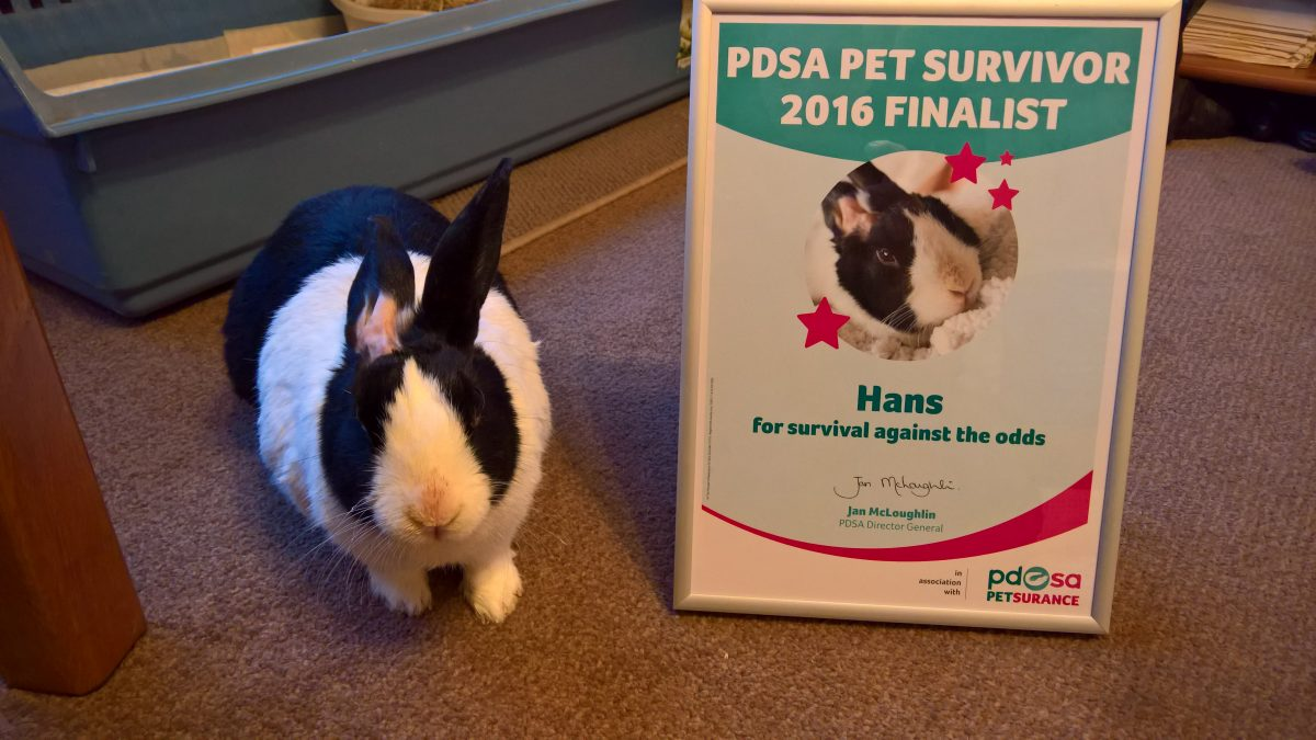 hans with pdsa pet survivor certificate