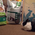 hans and pets at home donations