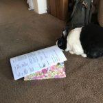 Hans meeting notes